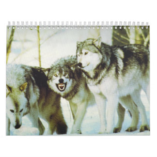 Wolf Calender Calendar