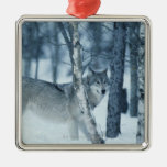 Wolf (Canis lupus) during Winter Metal Ornament