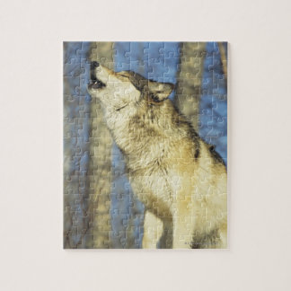 Wolf (Canis lupus) howling, close-up, Canada Jigsaw Puzzle