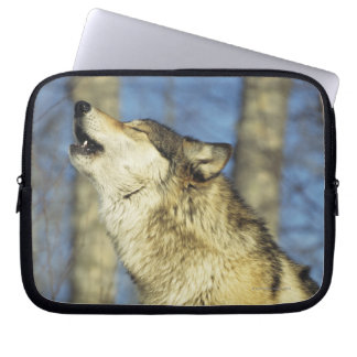 Wolf (Canis lupus) howling, close-up, Canada Laptop Sleeve