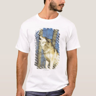 Wolf (Canis lupus) howling, close-up, Canada T-Shirt