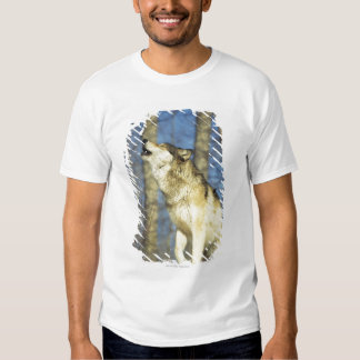 Wolf (Canis lupus) howling, close-up, Canada Tee Shirt