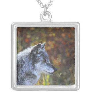 Wolf (Canis Lupus) Silver Plated Necklace