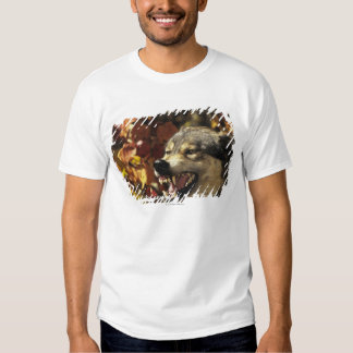 Wolf (Canis lupus) snarling, headshot, with Shirt