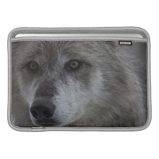 Wolf (Canus lupus) from Yellowstone National MacBook Air Sleeves