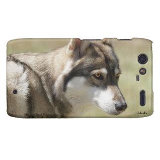 Wolf Case-Mate Motorola Droid RAZR Droid RAZR Cases
