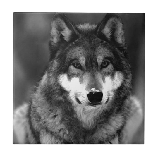 Wolf Ceramic Tile