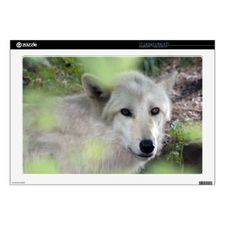 "Wolf Charm Decal For 17"" Laptop"