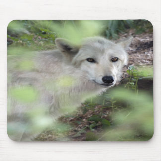 Wolf Charm Mouse Pads