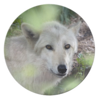 Wolf Charm Party Plate
