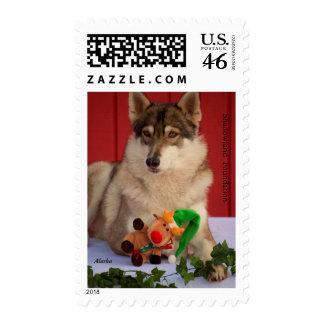 Wolf Christmas Postage Stamp