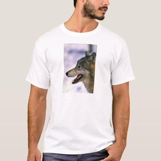 Wolf (close up) T-Shirt