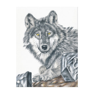 Wolf - coloured pencil design canvas print