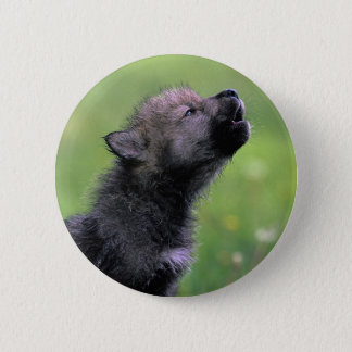 Wolf Cub Howling Button