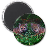 Wolf Cubs 2 Inch Round Magnet