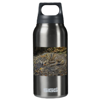Wolf Dare Insulated Water Bottle
