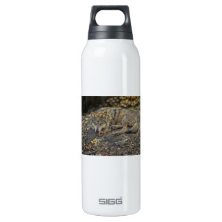 Wolf Dare SIGG Thermo 0.5L Insulated Bottle