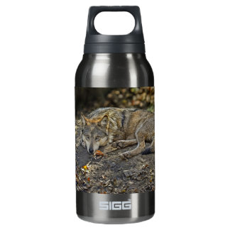 Wolf Dare SIGG Thermo 0.3L Insulated Bottle