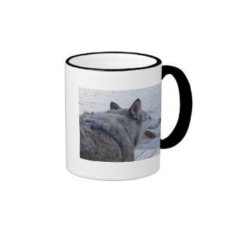 Wolf Dog at Cayuga Lake NY Coffee Mugs