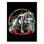 Wolf Dreamcatcher Postcard