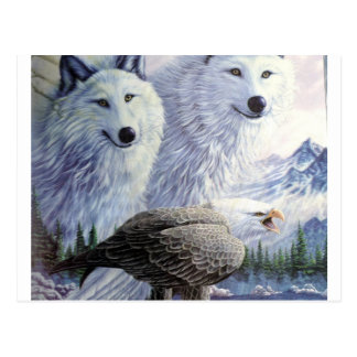 Wolf Eagle Animals Nature Park Office Business Art Postcard