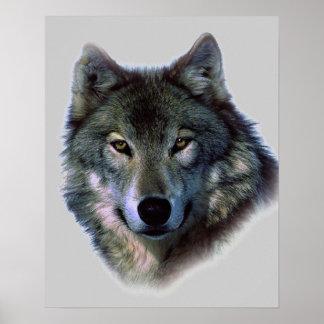 Wolf Eyes Artwork Poster Print