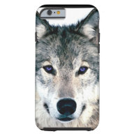 Wolf Eyes in woods wild nature animal iPhone 6 Case