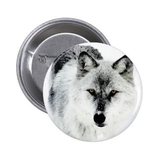 Wolf Eyes Pinback Button