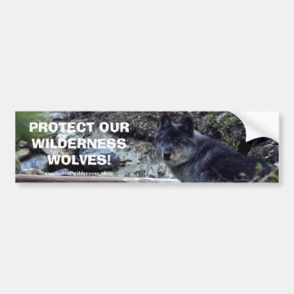 WOLF EYES Wildlife Conservation Bumper sticker