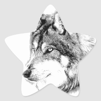 Wolf Face. Majestic Wolf Gazes Into The Distance. Star Sticker