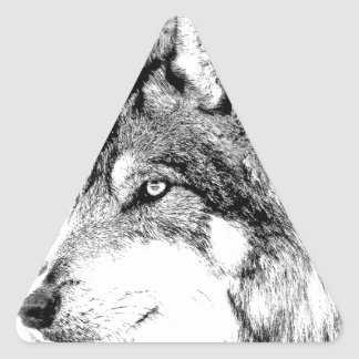 Wolf Face. Majestic Wolf Gazes Into The Distance. Triangle Stickers