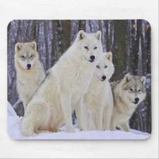 Wolf Family Mouse Pad