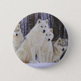 Wolf Family Pinback Button