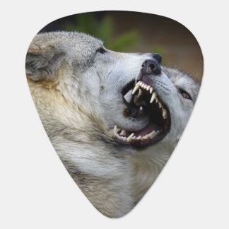 Wolf Fight Guitar Pick