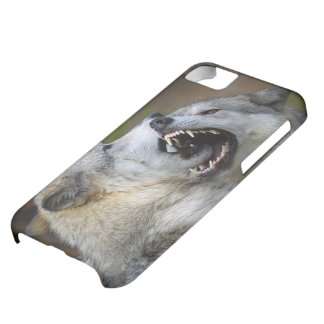Wolf Fight iPhone 5C Cover
