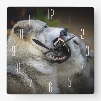 Wolf Fight Square Wall Clock