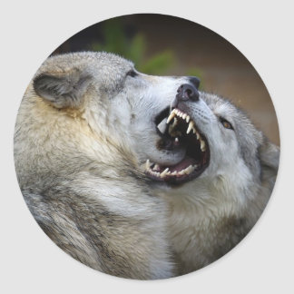 Wolf Fight Stickers