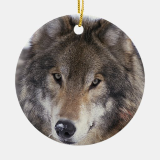 Wolf Gaze Ornament Christmas Tree Ornaments