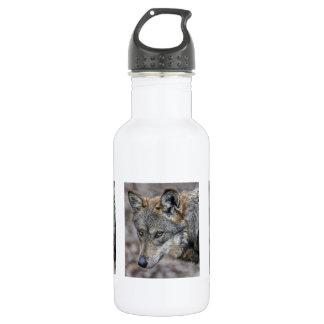 Wolf Glimpse Close Up 18oz Water Bottle