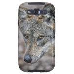 Wolf Glimpse Samsung Galaxy S3 Cover