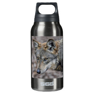 Wolf Glimpse SIGG Thermo 0.3L Insulated Bottle