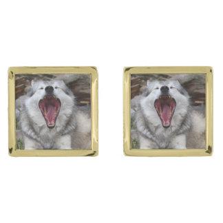 wolf gold cufflinks