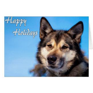 Wolf Happy Holidays.jpg Card