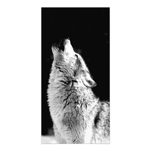 Wolf Howling at Moon Photo Card