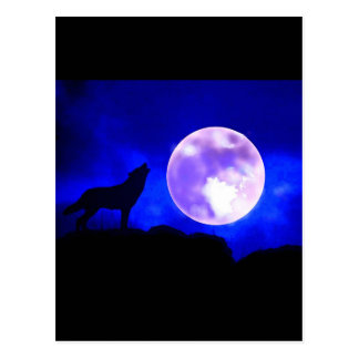 Wolf Howling at Moon Postcard