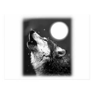 Wolf Howling at Moon Post Cards
