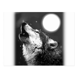 Wolf Howling at Moon Post Card