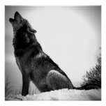 Wolf Howling at Moon Poster Print - Wolf Posters