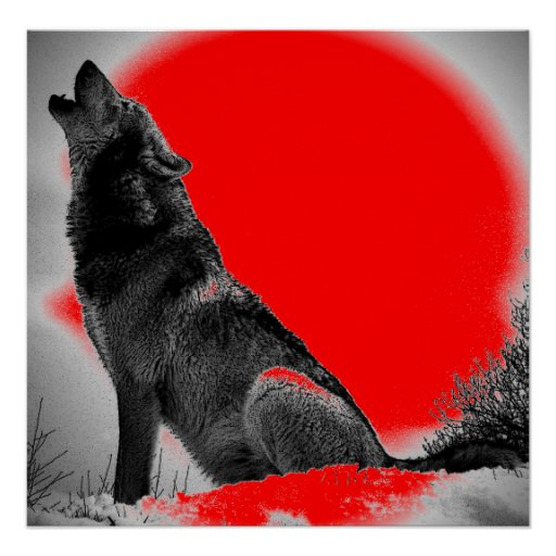 Red Wolf Howling Wolf Howling at Moon R...