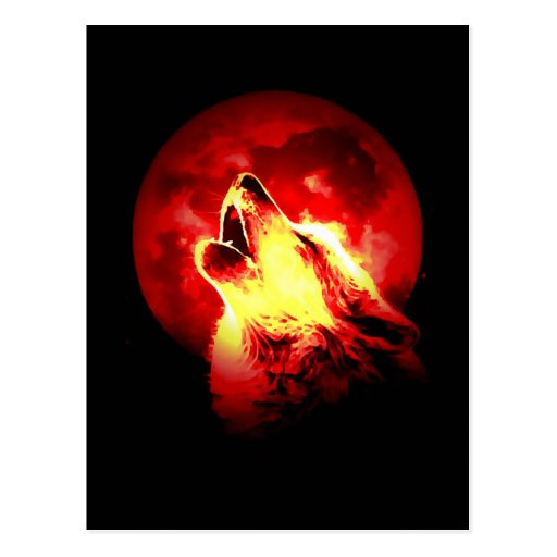 Wolf Howling at Red Night Post Cards